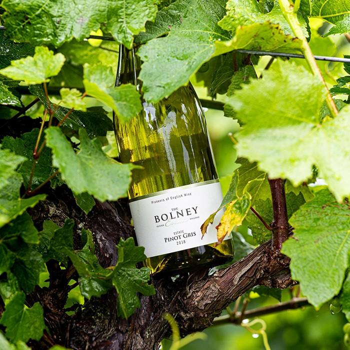 Bolney Pinot Gris